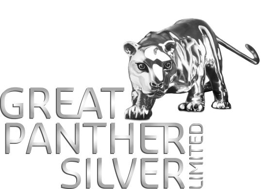 Great Panther anuncia presidente ejecutivo